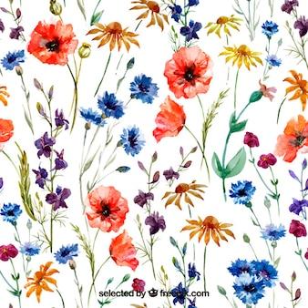 Variety of watercolor flowers