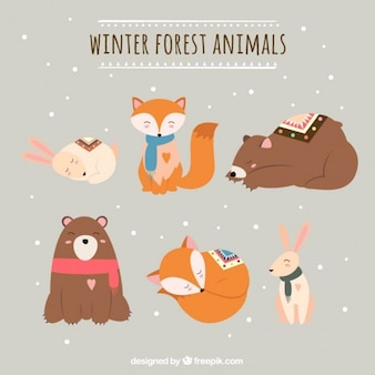 Различные животные леса в зимний сезон