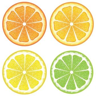 Various citrus slices