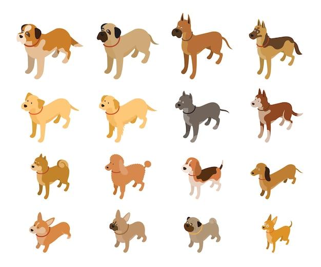 Изометрические набор различных пород собак