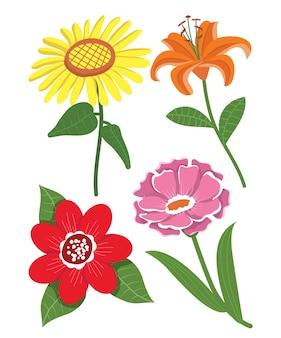Различные цветочные векторные иллюстрации пачка