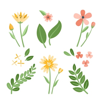 Various flowers with leaves flat design collection