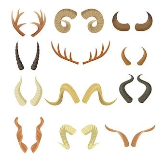 다양한 뿔 세트. 뿔, 숫양, 순록, 무스, 소, 사슴, 영양, 사슴 각질 부분의 쌍 흰색으로 격리