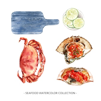Various isolated watercolor seafood illustration for decorative use.