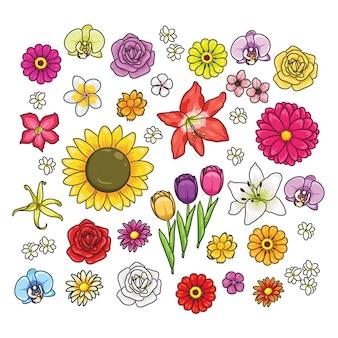 Различные виды мультяшных цветов