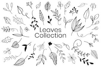 様々な葉落書きコレクションベクトル