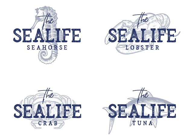 Various sea life quotes and illustrations collection