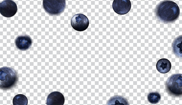 Various shapes of blueberries on transparent background