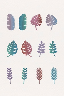 Various tropical leaves set