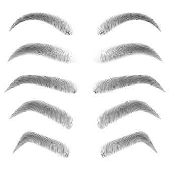 Various types of eyebrows.