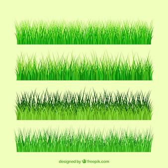 草の様々な種類