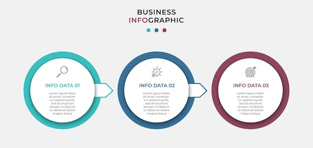 Vectoinfographic design business template with icons and 3 options or steps