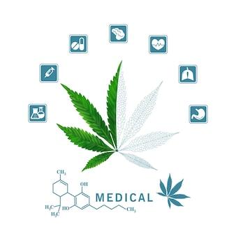벡터 및 일러스트레이션, 건강 혜택 오일, 의료용 약.