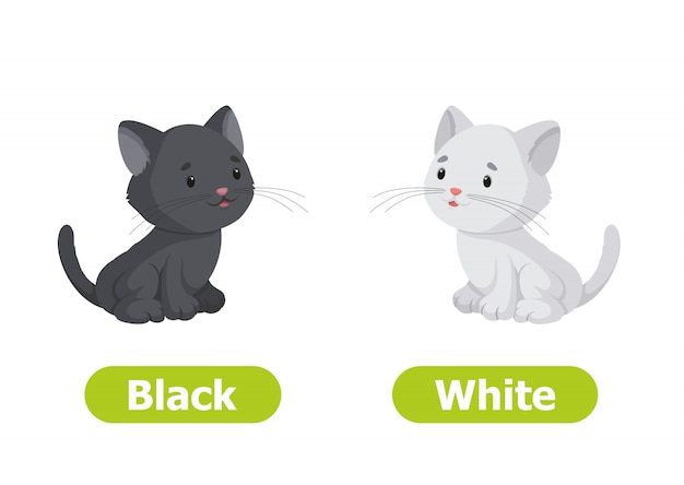 Vector antonyms and opposites. black and white. cartoon characters illustration on white background.