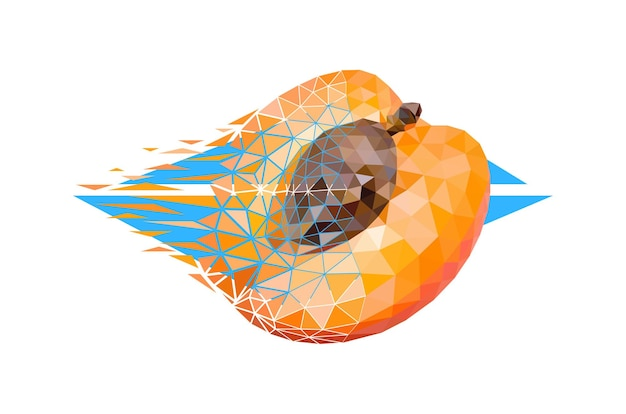 Vector apricot in low poly style. digital art