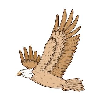 펜과 잉크로 만든 벡터 예술적 삽화 비행 중인 독수리