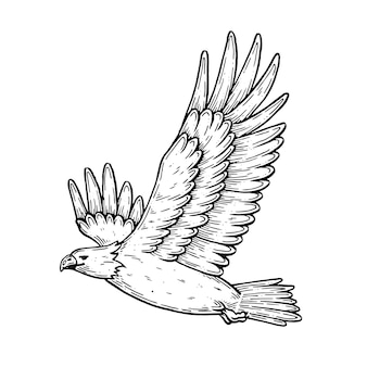 Vector artistic illustration handmade made with pen and ink an eagle in flight