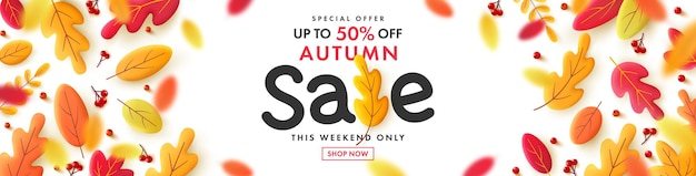 Vector of autumn sale poster or banner with falling leaves