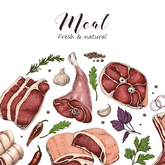 Vector background with different color meats