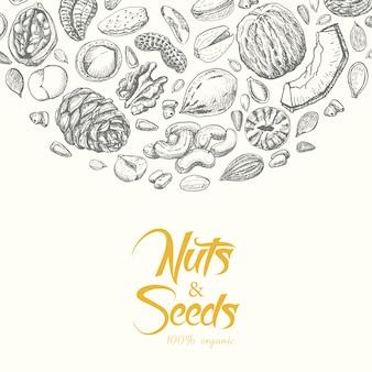 Векторный фон с орехами и семенами