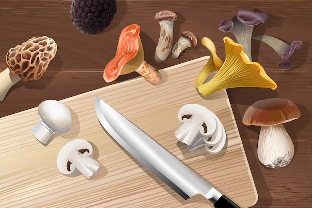 Векторный фон с различными видами съедобных грибов
