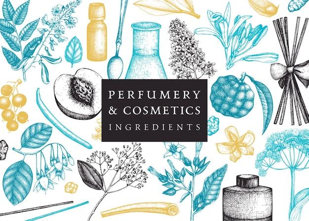 香水と化粧品の成分のイラストをスケッチした香りのよい果物とベクトルバナー。芳香族および薬用植物のデザイン。色の植物テンプレートベクトルイラスト。