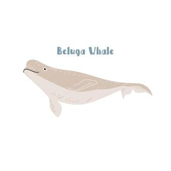 Вектор белухи. иллюстрации шаржа на белом фоне для наклейки, дизайн