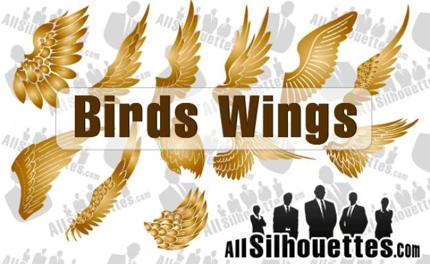 Vector birds wings