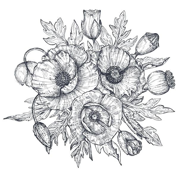 벡터 흑백 꽃 구성, 손으로 그린 양귀비 꽃, 새싹 및 잎의 꽃다발은 흰색 배경에 격리된 스케치 스타일로 되어 있습니다. 봄 디자인이나 색칠하기 책을 위한 아름다운 삽화.