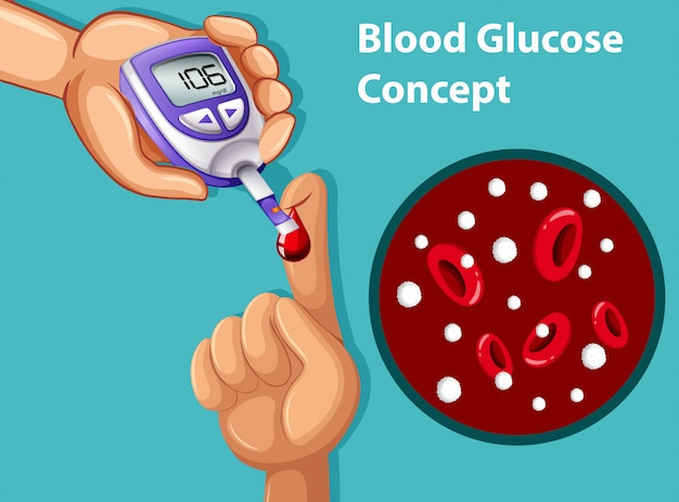 A vector of blood glucose concept