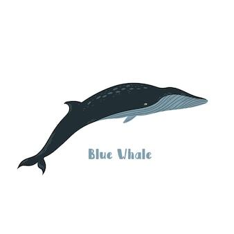 Вектор синий кит. иллюстрации шаржа на белом фоне для наклейки, дизайн