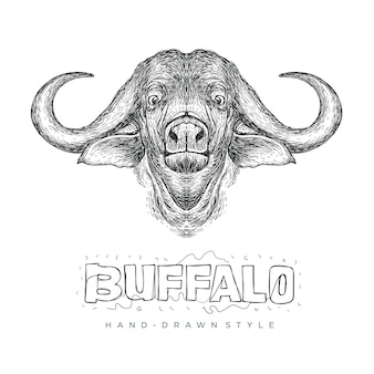 Vector buffalo head, realistic animal illustration with hand drawn style