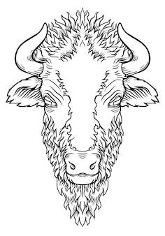 Vector of a buffalo headon white