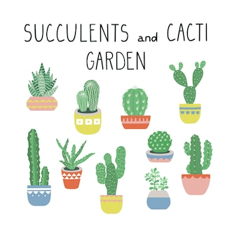 Vector cacti and succulents illustration set.