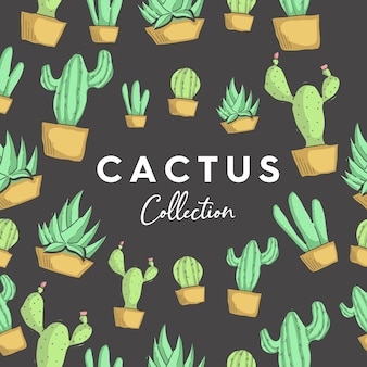 Vector cactus collection