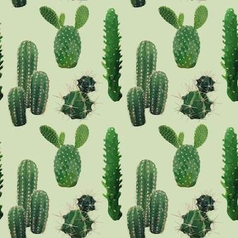 벡터 선인장 식물 완벽 한 패턴입니다. 이국적인 열 대 여름 식물 배경.