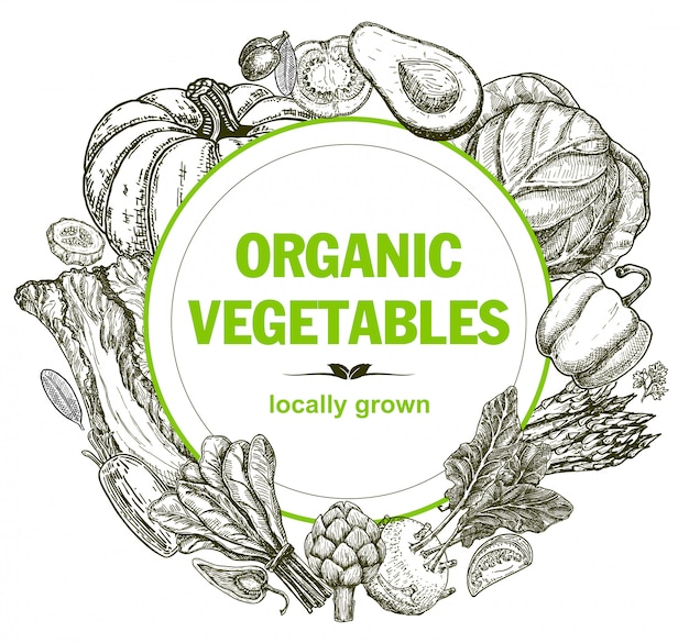 手でベクトルカードデザインには、野菜とスパイスのスケッチが描かれています。農民市場のメニューデザインの手描き野菜とポスターテンプレートフレーム。ビンテージの健康食品のコンセプト