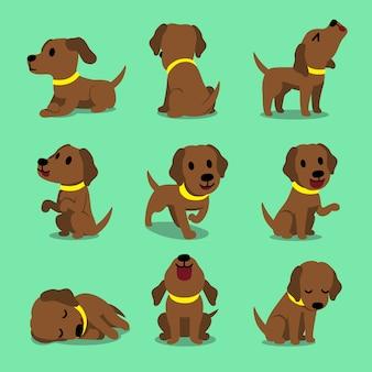 Vector cartoon character brown labrador dog poses