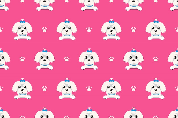 Vector cartoon character maltese dog seamless pattern
