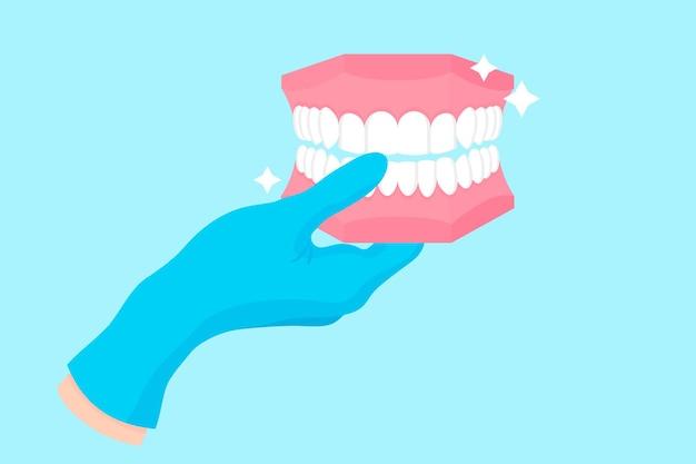 人間の顎の歯科ファントムまたはプラモデルを保持している青い手袋の歯科医のベクトル漫画の手。