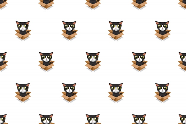 Vector cartoon illustration cat in cardboard box seamless pattern