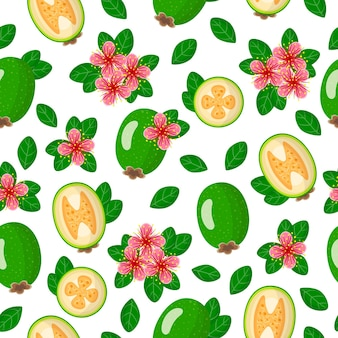Vector cartoon seamless pattern with acca sellowiana or feijoa exotic fruits, flowers and leafs