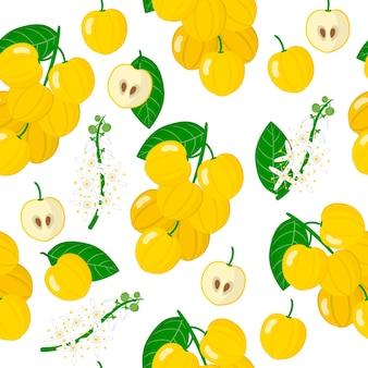 Acronychia acidulaまたはレモンアスペンのエキゾチックな果物、花、葉のベクトル漫画シームレスパターン