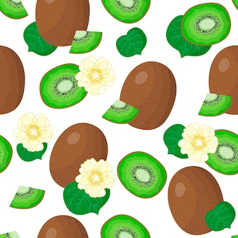 Vector cartoon seamless pattern with actinidia chinensis or kiwifruit exotic fruits, flowers and leafs