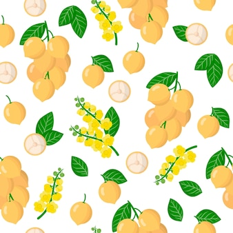 Vector cartoon seamless pattern with baccaurea ramiflora or burmese grape exotic fruits, flowers and leafs