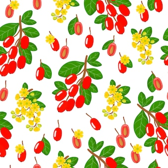 Vector cartoon seamless pattern with berberis vulgaris or barberry exotic fruits, flowers and leafs