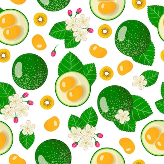 Vector cartoon seamless pattern with caryocar brasiliense or pequi exotic fruits, flowers and leafs