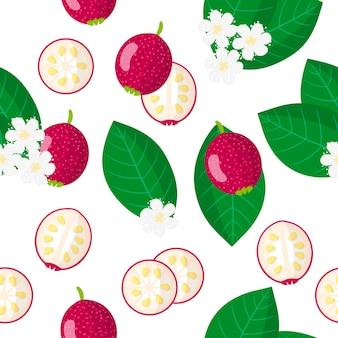 Векторный мультфильм бесшовные модели с экзотическими фруктами, цветами и листьями каттлеи гуавы на белом фоне