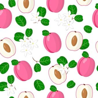 Chrysobalanus icacoまたはゴールデンプラムのエキゾチックな果物、花、葉のベクトル漫画シームレスパターン
