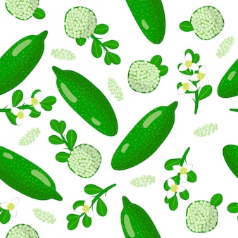 Vector cartoon seamless pattern with citrus australasica or australian finger lime exotic fruits, flowers and leafs